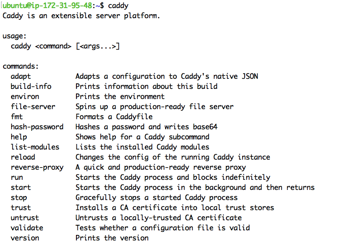 """Testing the """"caddy"""" command."""